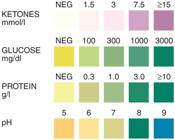 Urine Test Strip, multiple urine test strip, urine test strips, urine analysis test strip, multiple urine test strips