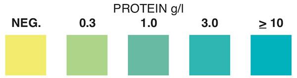 protein test strip, protein, protein test strips